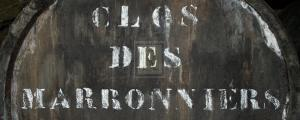 Cellar IV by Tony Koukos