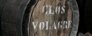 Cellar VII by Tony Koukos