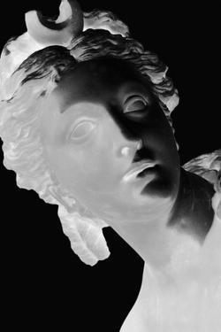 X-ray - Louvre III by Tony Koukos