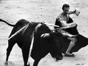 Matador Julian Marin and Bull in the Ring During a Bullfight Celebrating the Fiesta de San Ferman by Tony Linck