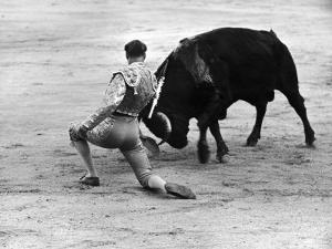 Matador Julian Marin and Bull in the Ring for a Bullfight During the Fiesta de San Ferman by Tony Linck