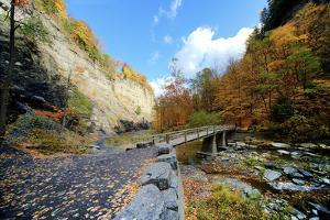 Taughannock Falls State Park by Tony Shi Photography