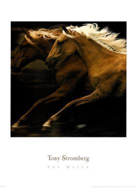 The Dance by Tony Stromberg
