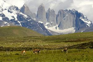 Torres Del Paine by Tony