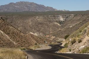 Desert road near Santa Rosalia, Baja California, Mexico, North America by Tony Waltham