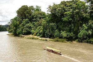 Misahualli in The Oriente, head of navigation on Rio Napo (Amazon), Ecuador, South America by Tony Waltham