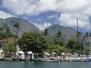 Sailing Boats in the Harbour of Lahaina, an Old Whaling Station, West Coast, Hawaii by Tony Waltham