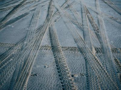 4Wd Tracks on Sand, Fraser Island, Queensland, Australia