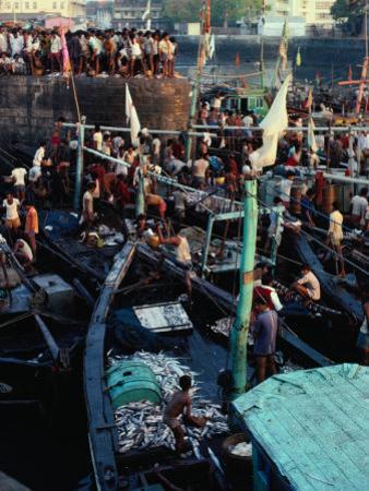 Boats and People in Sassoon Dock, Mumbai, Maharashtra, India