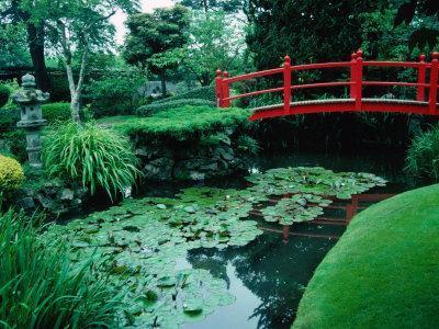 Bridge and Pond of Japanese Style Garden, Kildare, Ireland