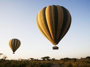 Hot Air Balloons at Dawn by Tony Wheeler
