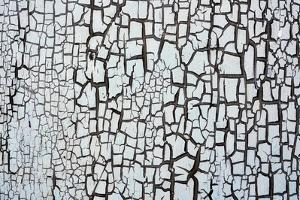 Cracked Paint Background by tony4urban