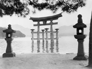 Torii Gate in Water