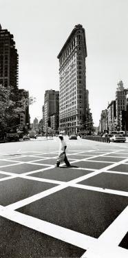 Flatiron Building, New York by Torsten Hoffman