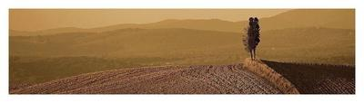 https://imgc.allpostersimages.com/img/posters/toscana-landscape_u-L-F8VNWH0.jpg?p=0