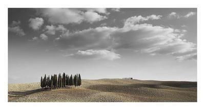 https://imgc.allpostersimages.com/img/posters/toscana-landscape_u-L-F8VNWN0.jpg?p=0
