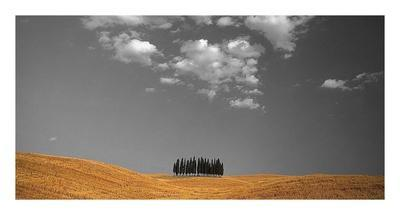 https://imgc.allpostersimages.com/img/posters/toscana-landscape_u-L-F8VNYY0.jpg?artPerspective=n