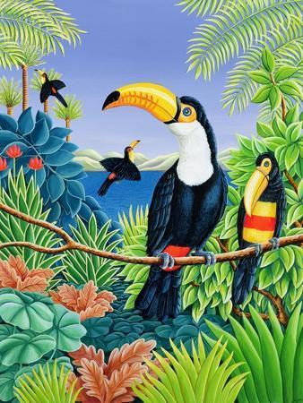 https://imgc.allpostersimages.com/img/posters/toucans-1993_u-L-Q1HJ2P10.jpg?artPerspective=n