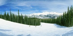Tourists Skiing on a Snow Covered Landscape, Telluride, San Miguel County, Colorado, USA