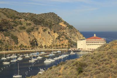 https://imgc.allpostersimages.com/img/posters/town-of-avalon-on-catalina-island-southern-california-usa_u-L-Q1D0T5P0.jpg?p=0