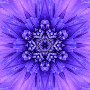 Blue Concentric Flower Center: Mandala Kaleidoscopic by tr3gi