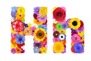 Flower Alphabet Isolated On White - Letter H by tr3gi