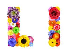 Flower Alphabet Isolated On White - Letter L by tr3gi