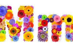 Flower Alphabet Isolated On White - Letter M by tr3gi