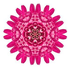 Purple Kaleidoscopic Flower Mandala by tr3gi