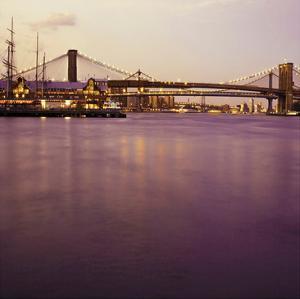Brooklyn Purple by Tracey Telik