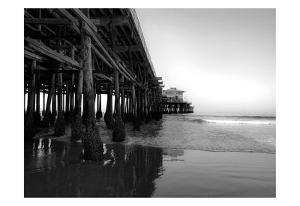 Californian Pier by Tracey Telik