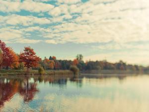 Dows Lake by Tracey Telik