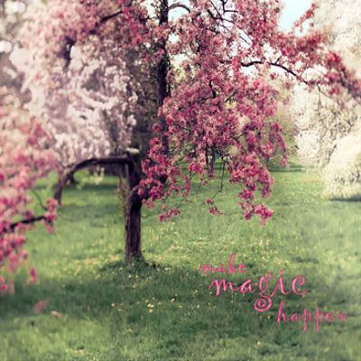 Make Magic by Tracey Telik