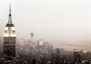 Pale Manhattan by Tracey Telik