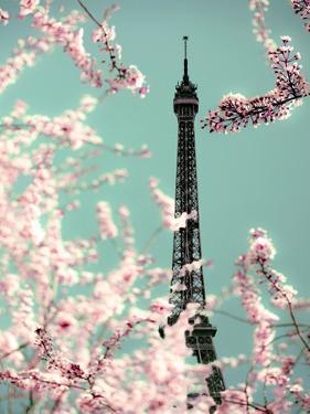 Spring Eiffel Green by Tracey Telik