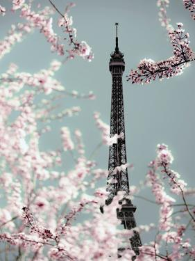 Spring Eiffel Pastel by Tracey Telik
