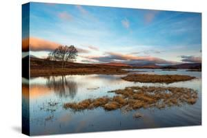 Early Morning Light at Loch Ba, Rannoch Moor Scotland UK by Tracey Whitefoot