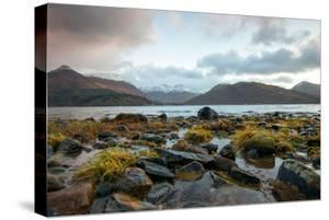 The Beach at Loch Leven in North Ballachulish in Scotland, UK by Tracey Whitefoot