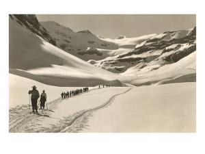 Trail of Cross-Country Skiers