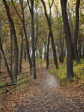 https://imgc.allpostersimages.com/img/posters/trail-to-great-bear-and-little-bear-mound-effigy-mounds-national-monument-iowa-usa_u-L-PHAHEI0.jpg?p=0