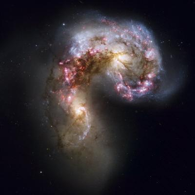 Trailing streamers of gas and stars, the Antennae galaxies collide