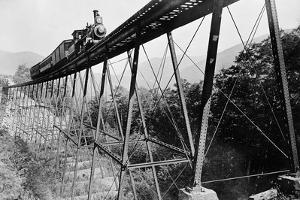 Train Crossing Railroad Trestle