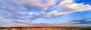 Train passing through a desert, New Mexico, USA