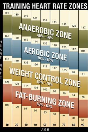 Training Heart Rate Zones Chart (Modern) Plastic Sign