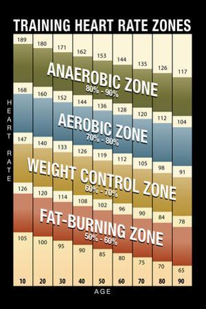 Training Heart Rate Zones Chart (Modern)