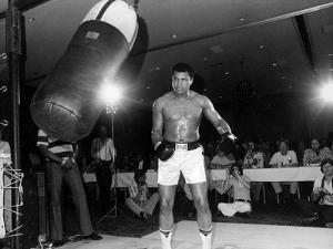 Training of Muhammad Ali in Washington April 20, 1976