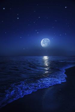 Tranquil Ocean at Night Against Starry Sky and Moon