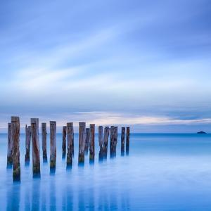 The Remains of an Old Jetty on the Beach Near Dunedin, New Zealand, Just before Dawn, Square by Travellinglight