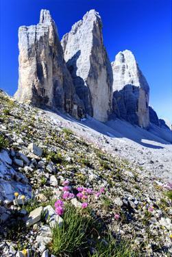 Tre Cime di Lavaredo, Sexten Dolomites, Province of Bolzano, South Tyrol, Italy