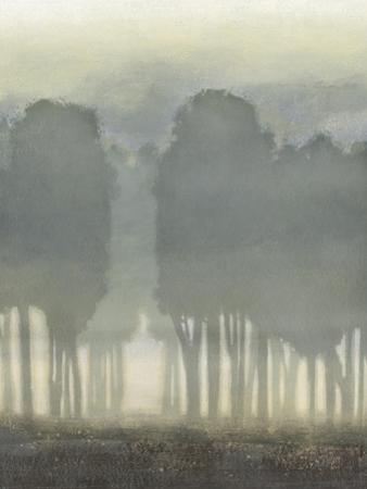Treeline Haze I